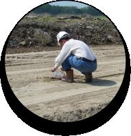 AggreBind Soil Stabilizing