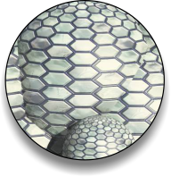 AggreBInd cross-linking polymer